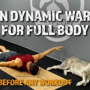 18-Min Dynamic Warm Up For Full Body | Do THIS Before Any Workout!