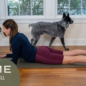 Home - Day 20 - Still  |  30 Days of Yoga With Adriene