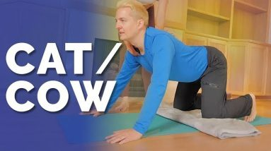 How To Do Cat Cow Pose: Yoga Pose Breakdown For Beginners