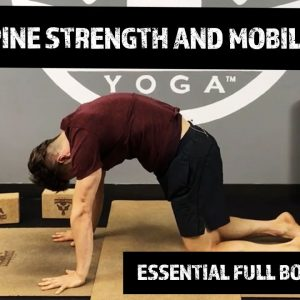 Build Spine Strength and Mobility | Essential Full Body Yoga Routine | #yogaformen