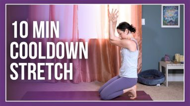 10 min Yoga Cooldown - Post Workout STRETCH (with kittens! 😻)